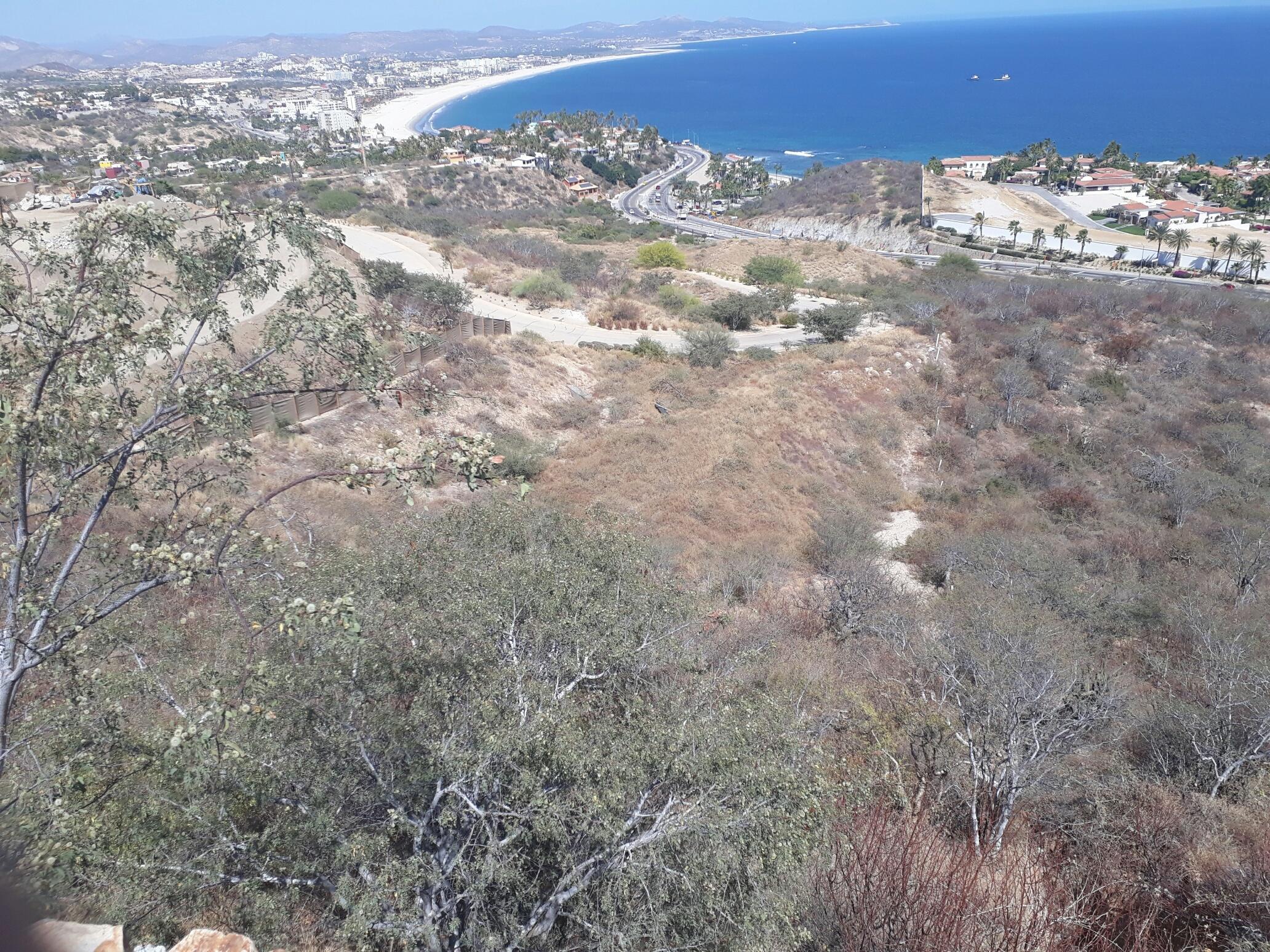 Home Site La Vista 15-8