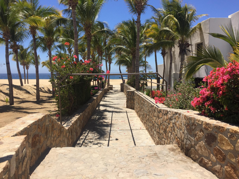 Cabo San Lucas, ,Land,For Sale,Camino De La Duna,19-725