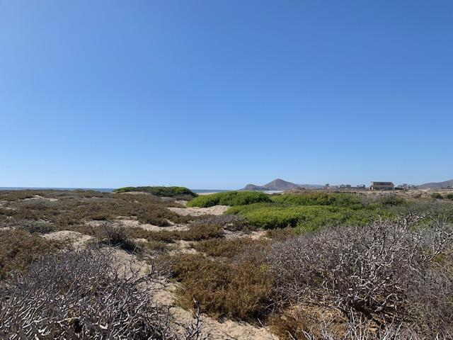 Pacific, ,Land,For Sale,calle sin,19-858