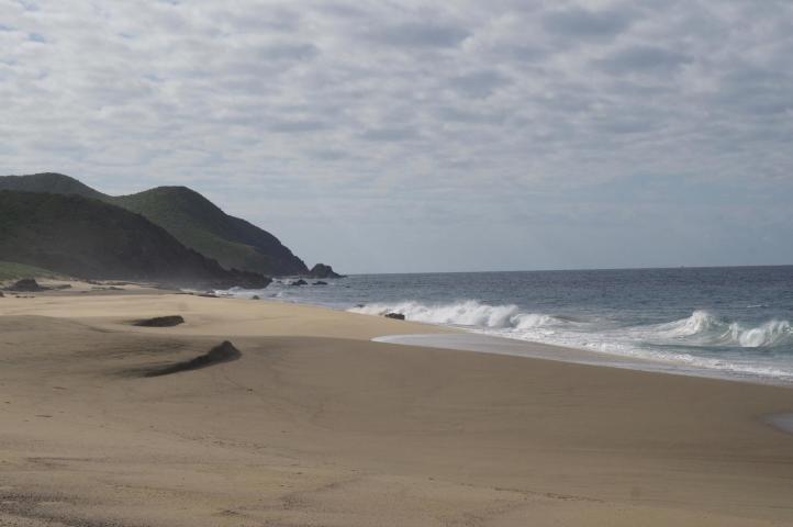 Ocean front dev.-1