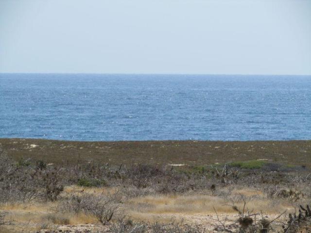 Ocean front dev.-7