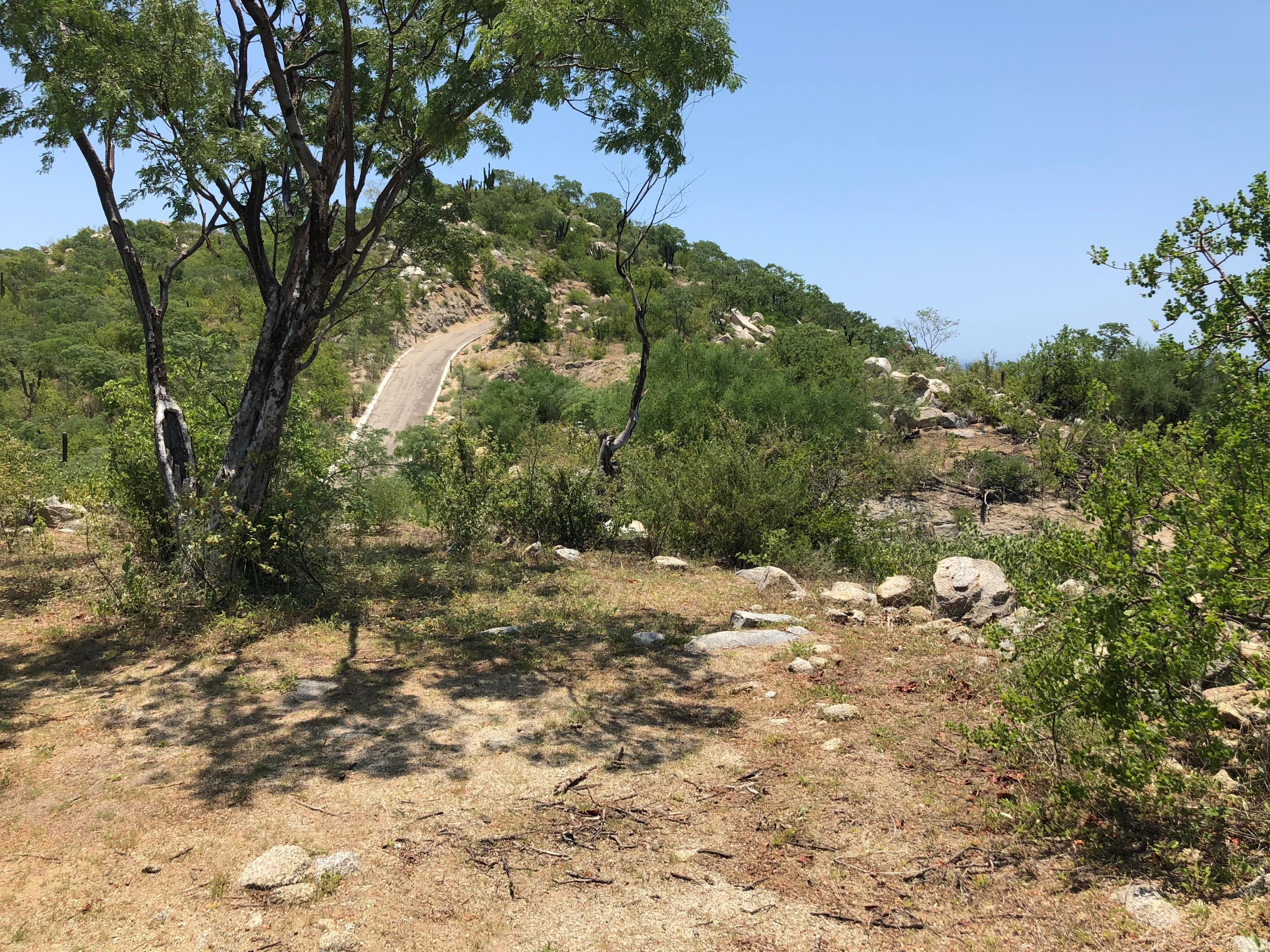 Cabo Corridor, ,Land,For Sale,Privada del Ray,19-949