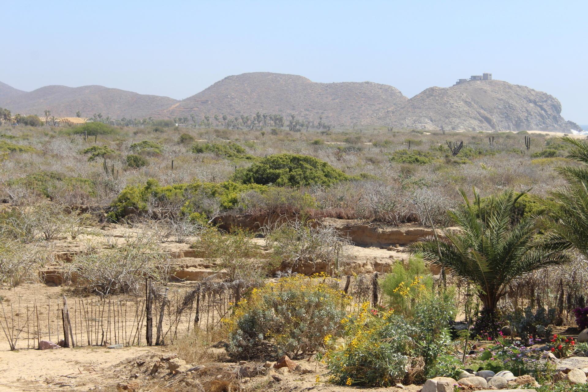 Desarrollo Rancho Nuevo-5