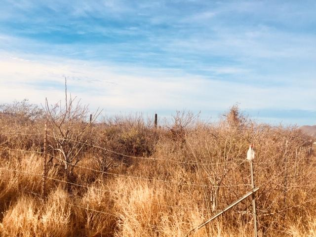 Cabo San Lucas, ,Land,For Sale,Fracccion J,19-1089