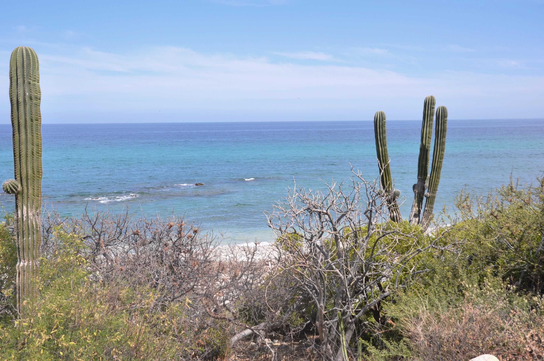 East Cape, ,Land,For Sale,Montemar Beachfront L15,19-1101