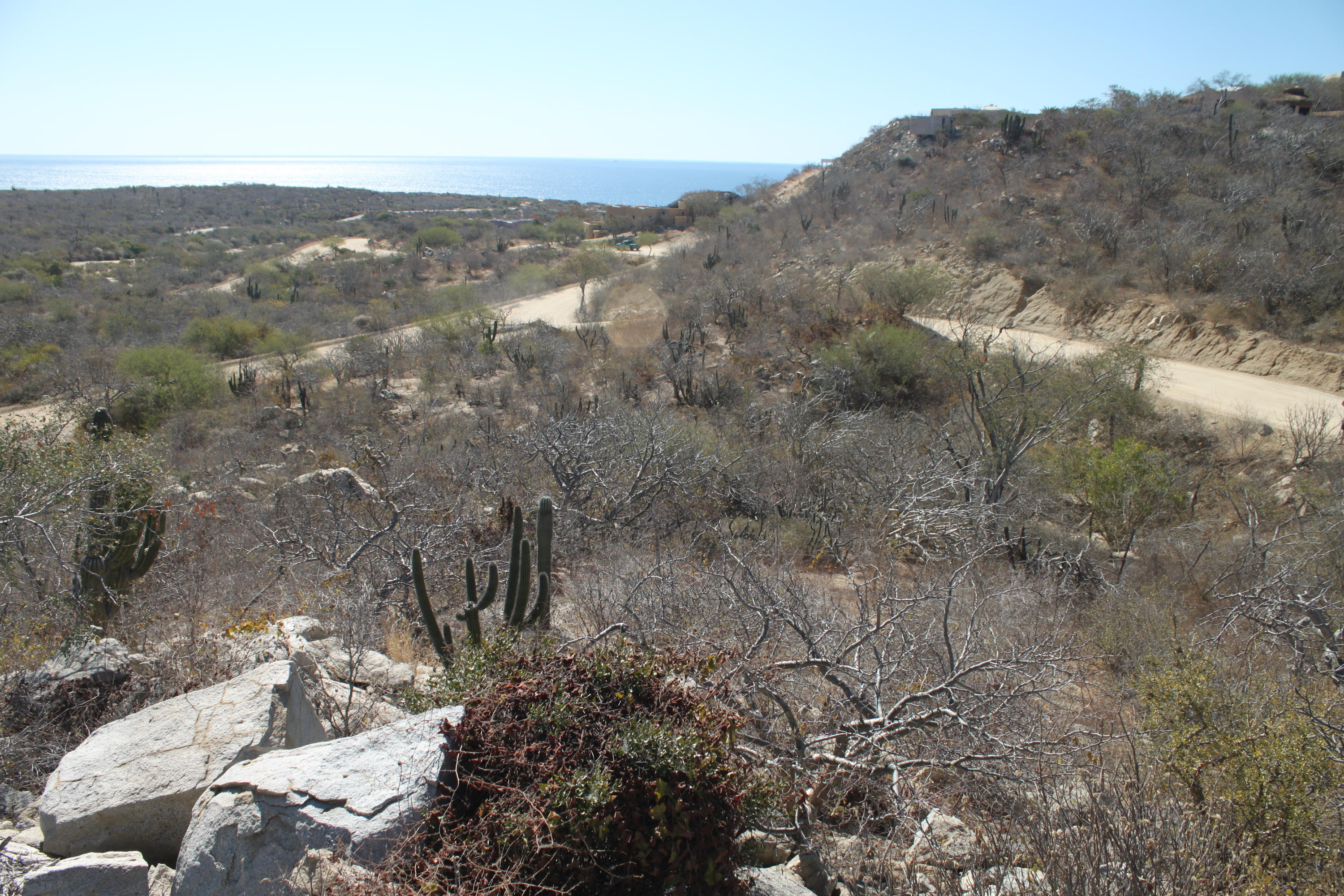 San Jose del Cabo, ,Land,For Sale,Carretera San Jose Los Frailes,19-1220