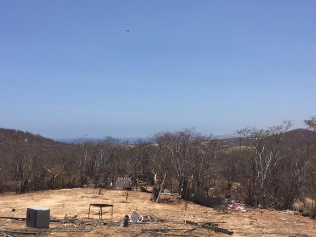 San Jose del Cabo, ,Land,For Sale,CAMINO A CABO DEL ESTE,19-1258