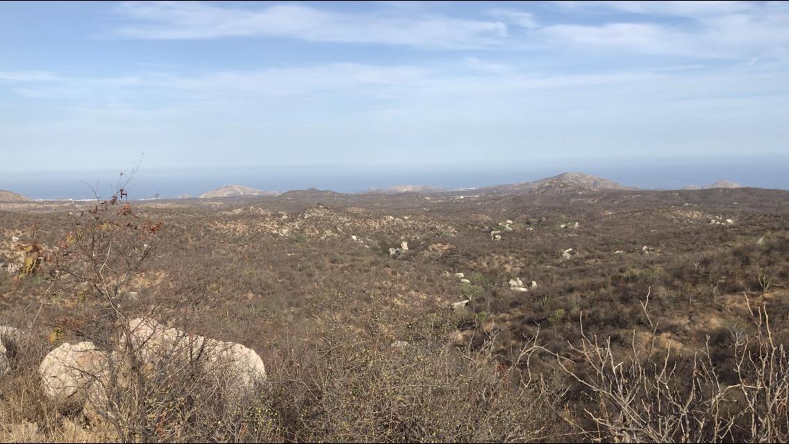 San Jose del Cabo, ,Land,For Sale,No Name,19-1291