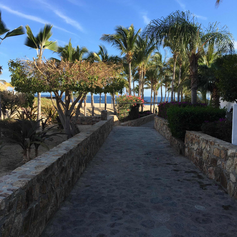 Cabo San Lucas, ,Land,For Sale,Camino Grande,19-1350