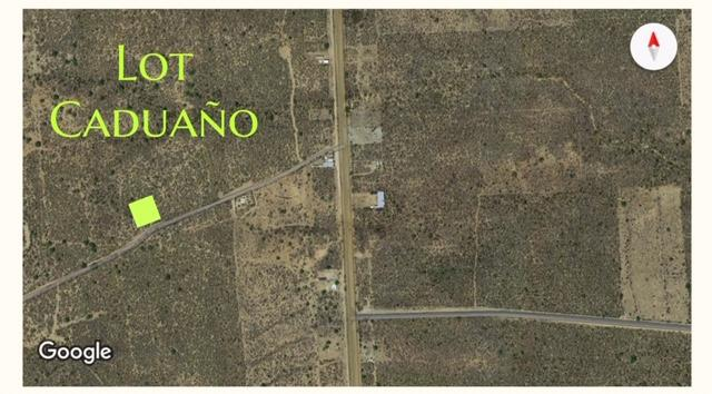East Cape, ,Land,For Sale,NOT Ejido land,19-1545