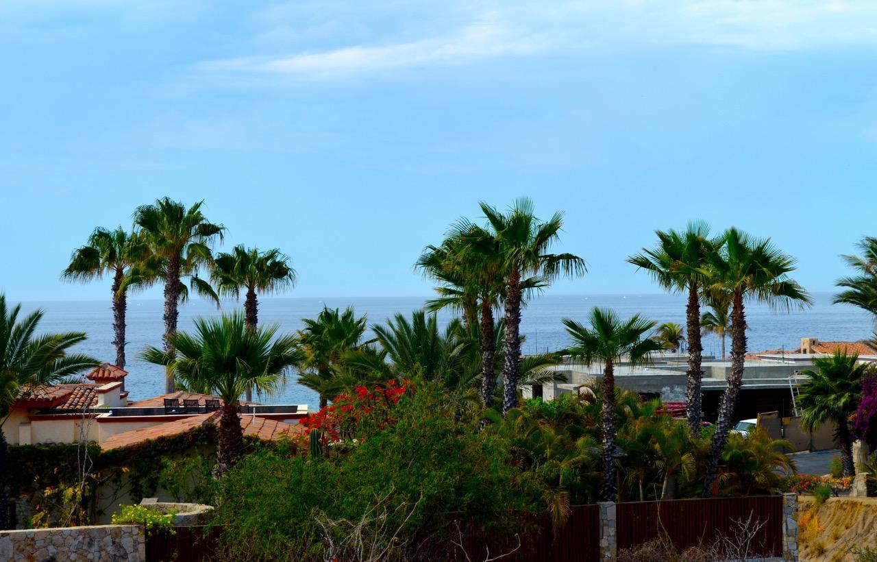 Punta Ballena #214-1