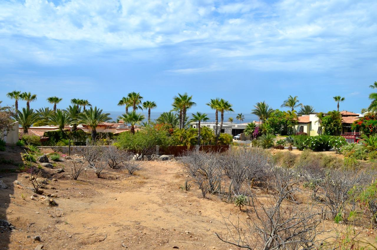 Punta Ballena #214-16