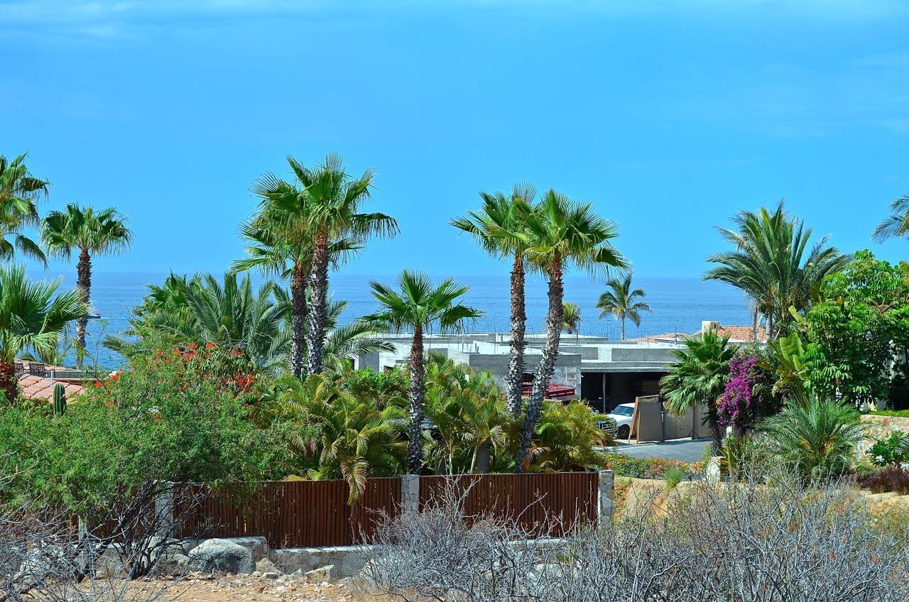 Punta Ballena #214