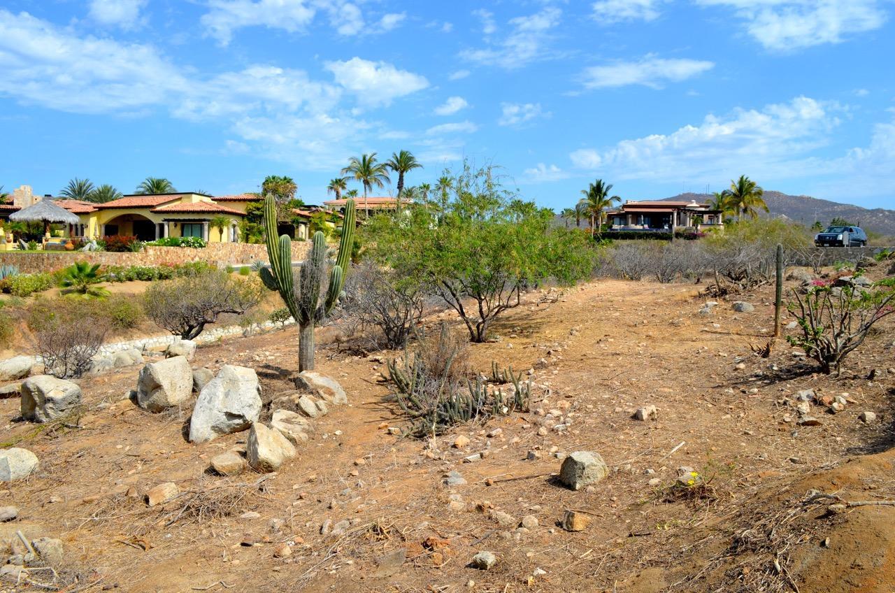 Punta Ballena #214-17
