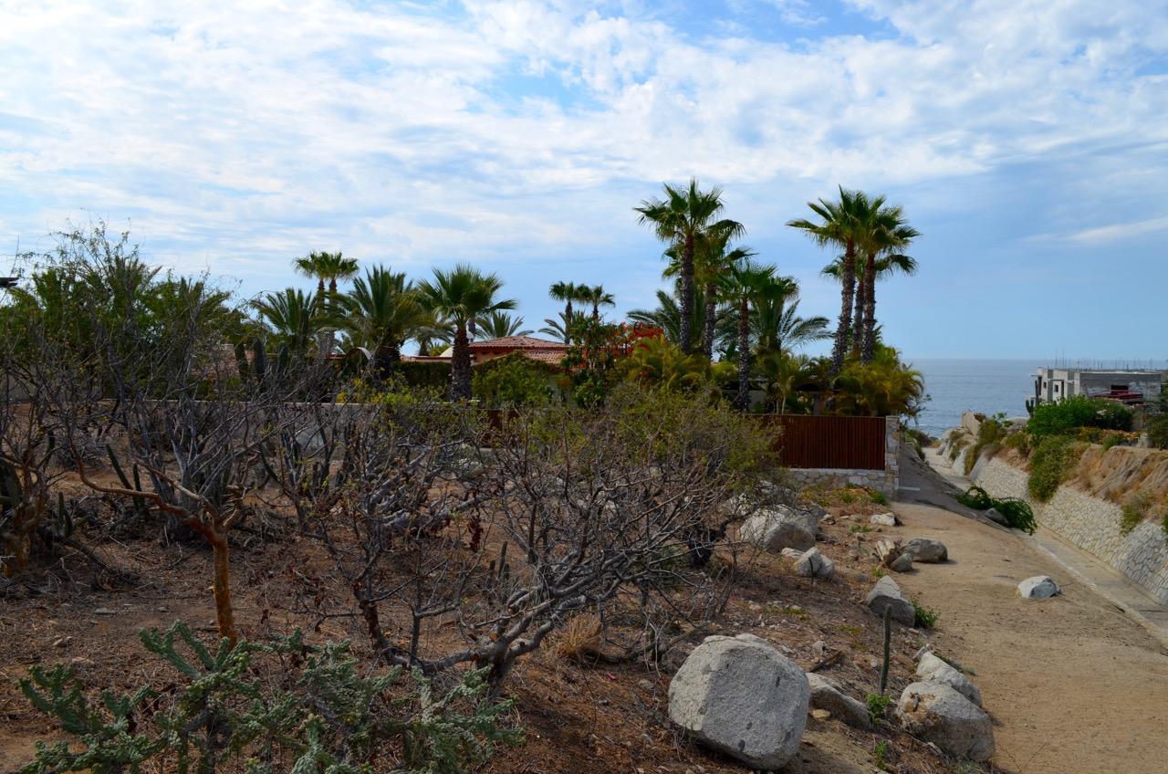 Punta Ballena #214-19