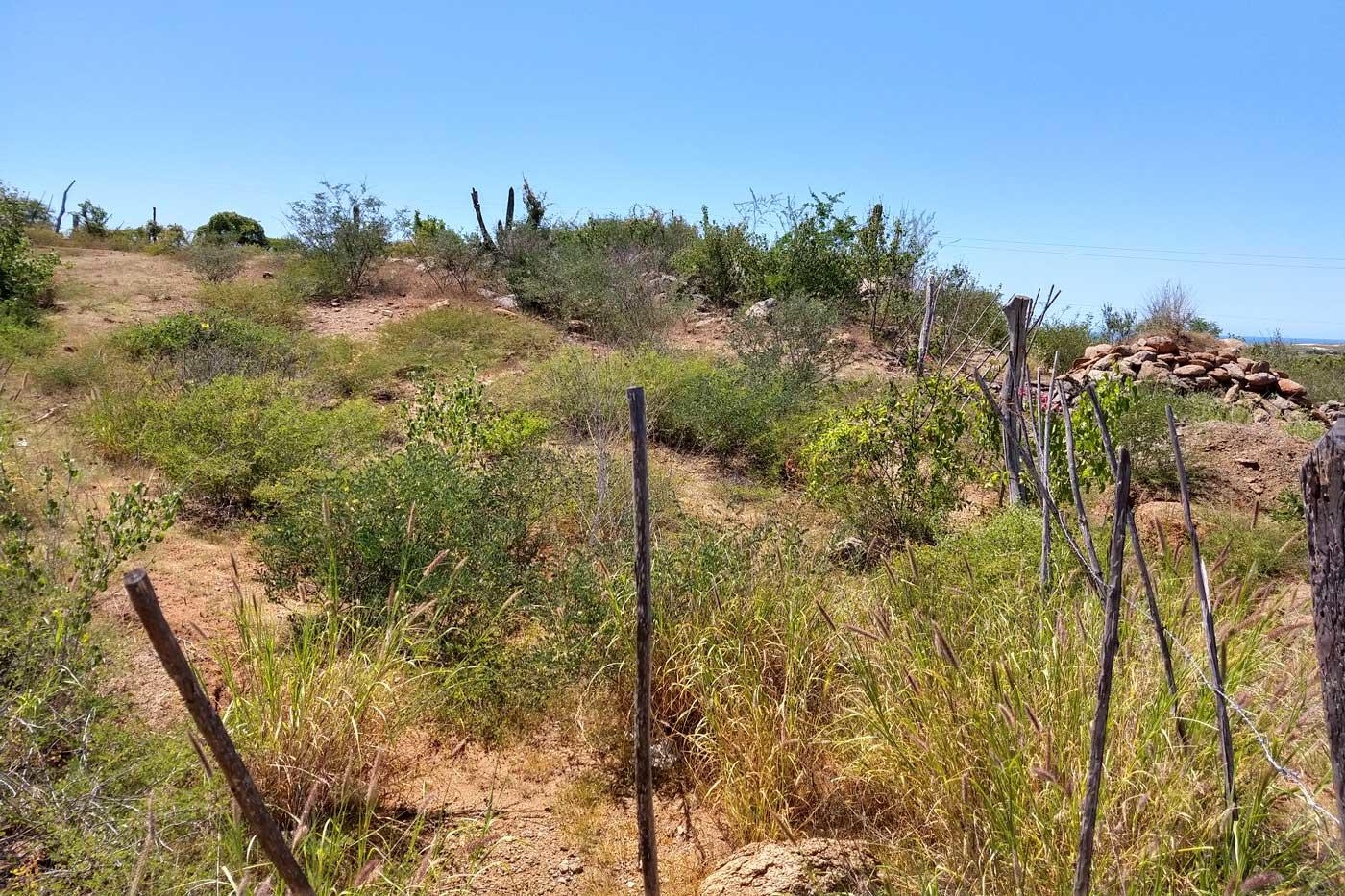 New San Juan Ocean View Lot-11