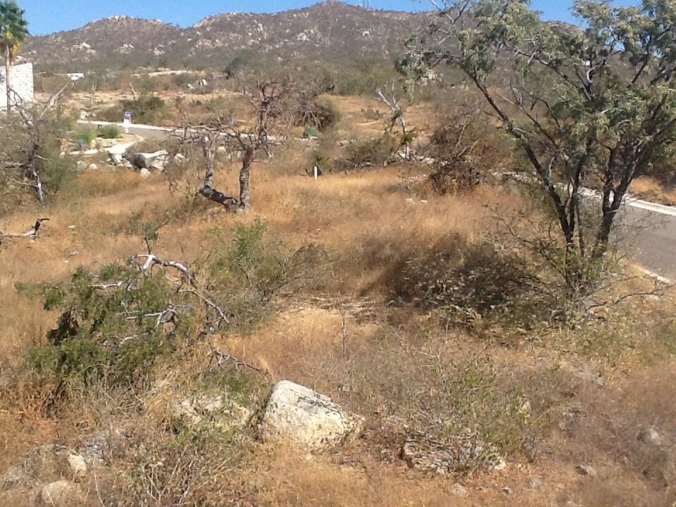 Cresta Arch View-2