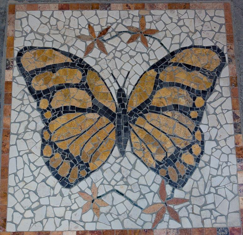 Casa Mariposa Todos Santos-55