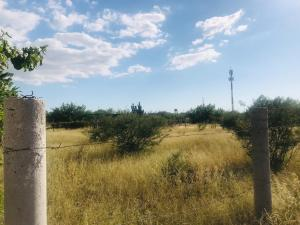 Terreno Calafia