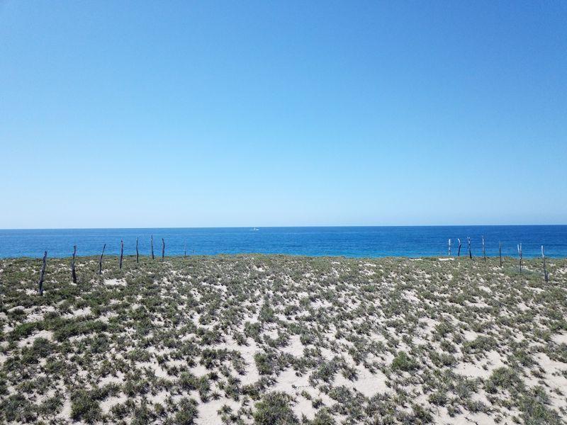 Oceanfront Lot Todos Santos #6-5