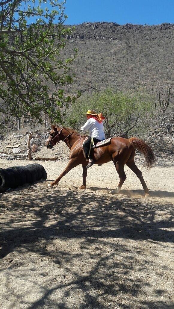 Rancho-9