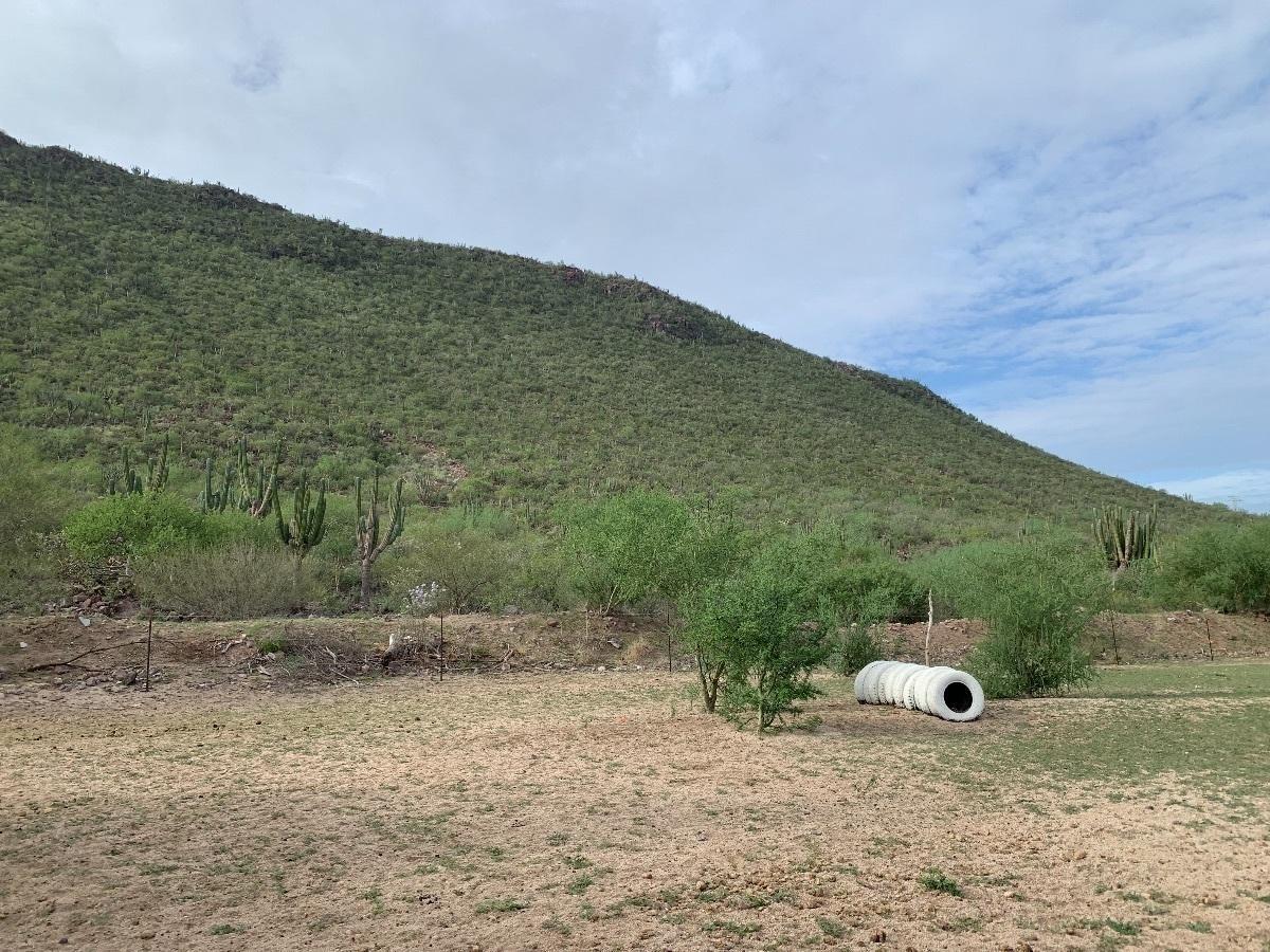Rancho-13