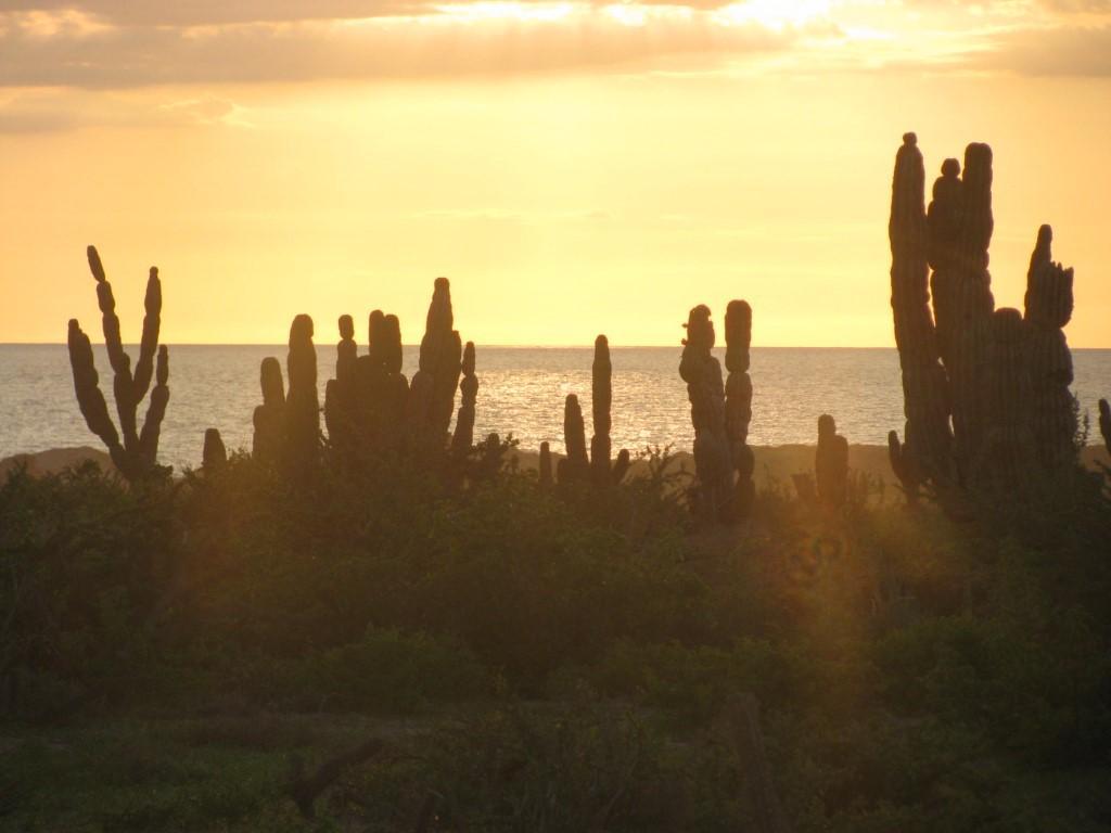 Vistas del Mar lot 0358-4
