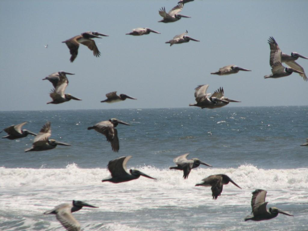 Vistas del Mar lot 0358-5
