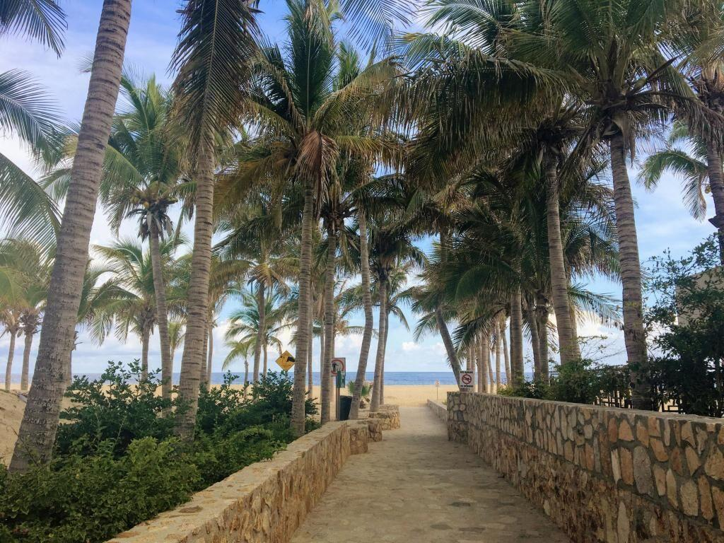 Cabo San Lucas, ,Land,For Sale,Valley of the Blue Moon,20-87