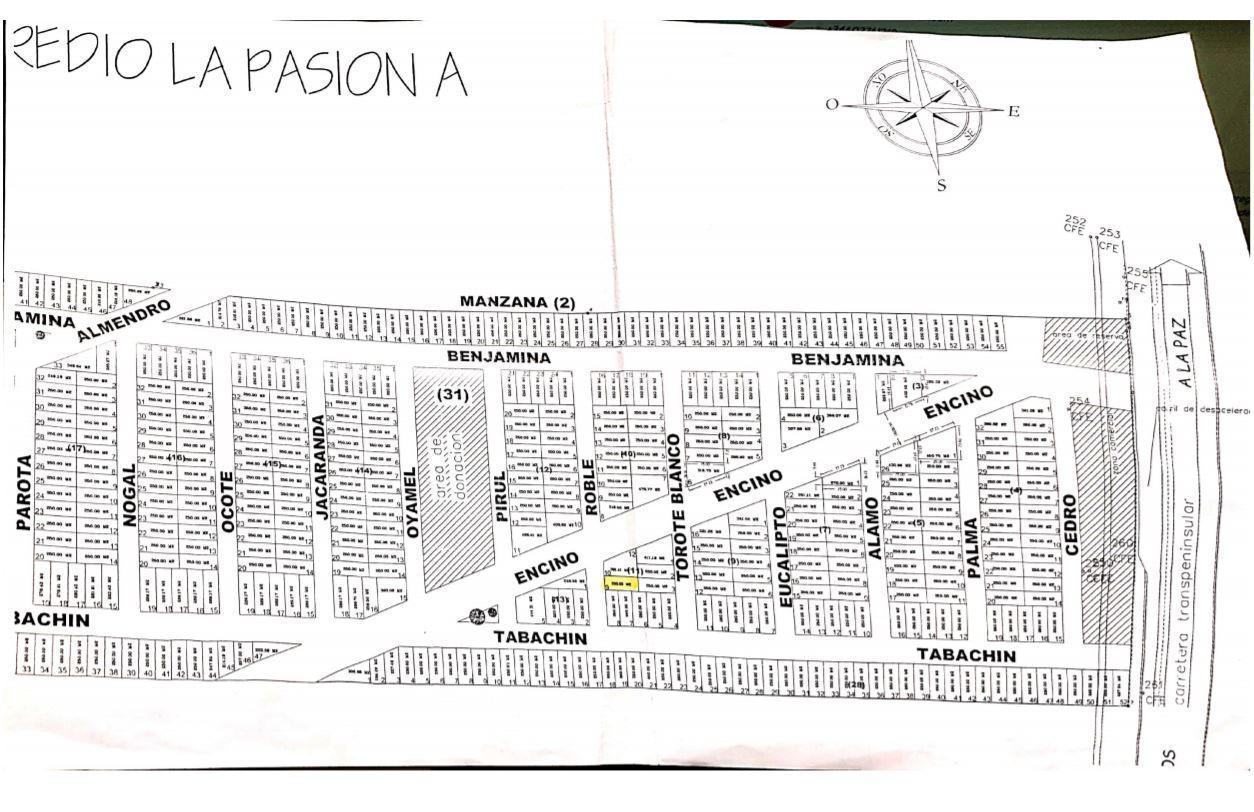 Lote La Pasion A-11