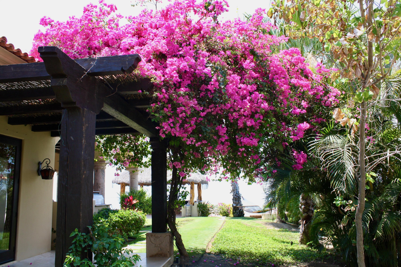 Hacienda Villa 306-14