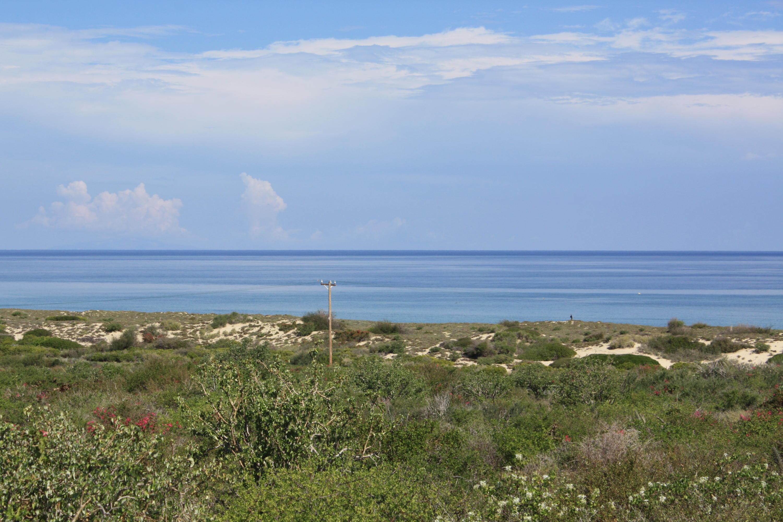 Palmas y Surguidero Fraccion I East Cape