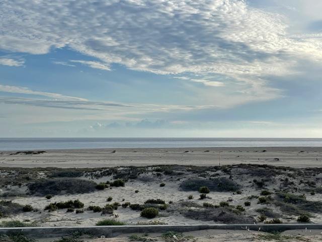 Ave Playa Tortuga East Cape