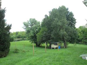 Property Photo: Chicken Coup in the Shade