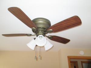 Property Photo: New Ceiling Fans in 2 Bedrooms