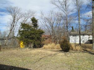 Property Photo: Level Yard
