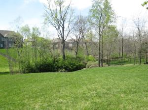 Property Photo: Large Yard for Family Activities