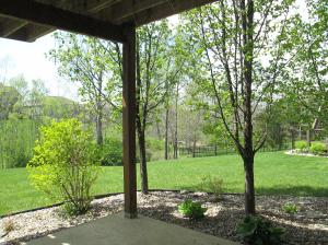 Property Photo: View of Yard from Patio
