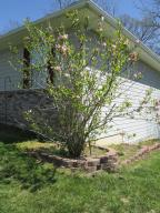Property Photo: Blooming Magnolia Tree
