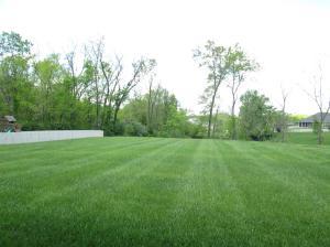 Property Photo: Large, Level Yard