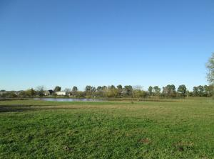 Property Photo: Lake & Pasture