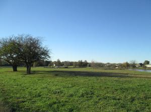 Property Photo: Lake & Pasture 3