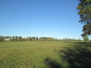 Property Photo: Pasture 1