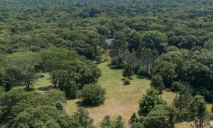 1526 1536 HYANNIS ROAD, BARNSTABLE, MA 02630  Photo 5