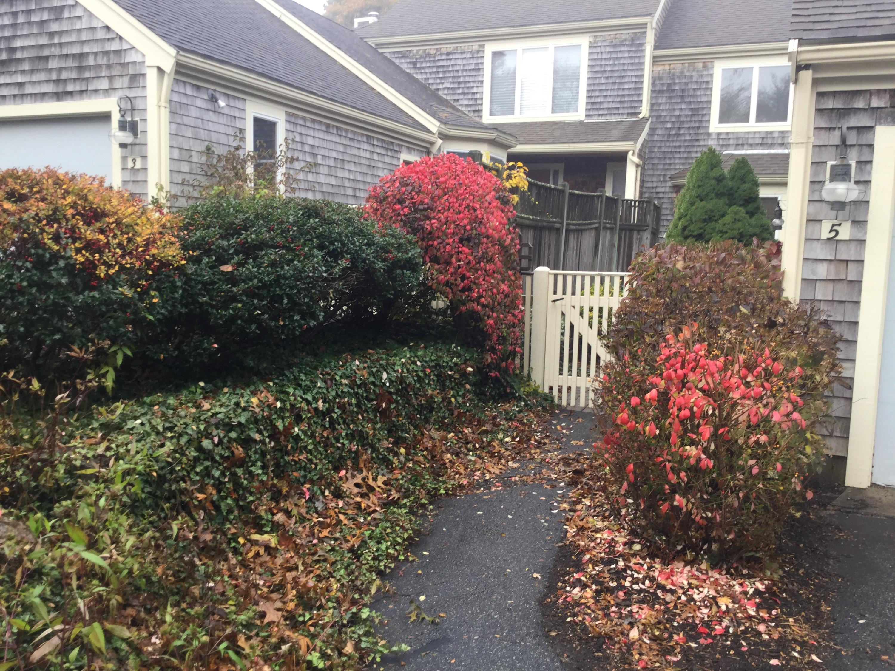 5 Kates Path  Yarmouth, MA 02675