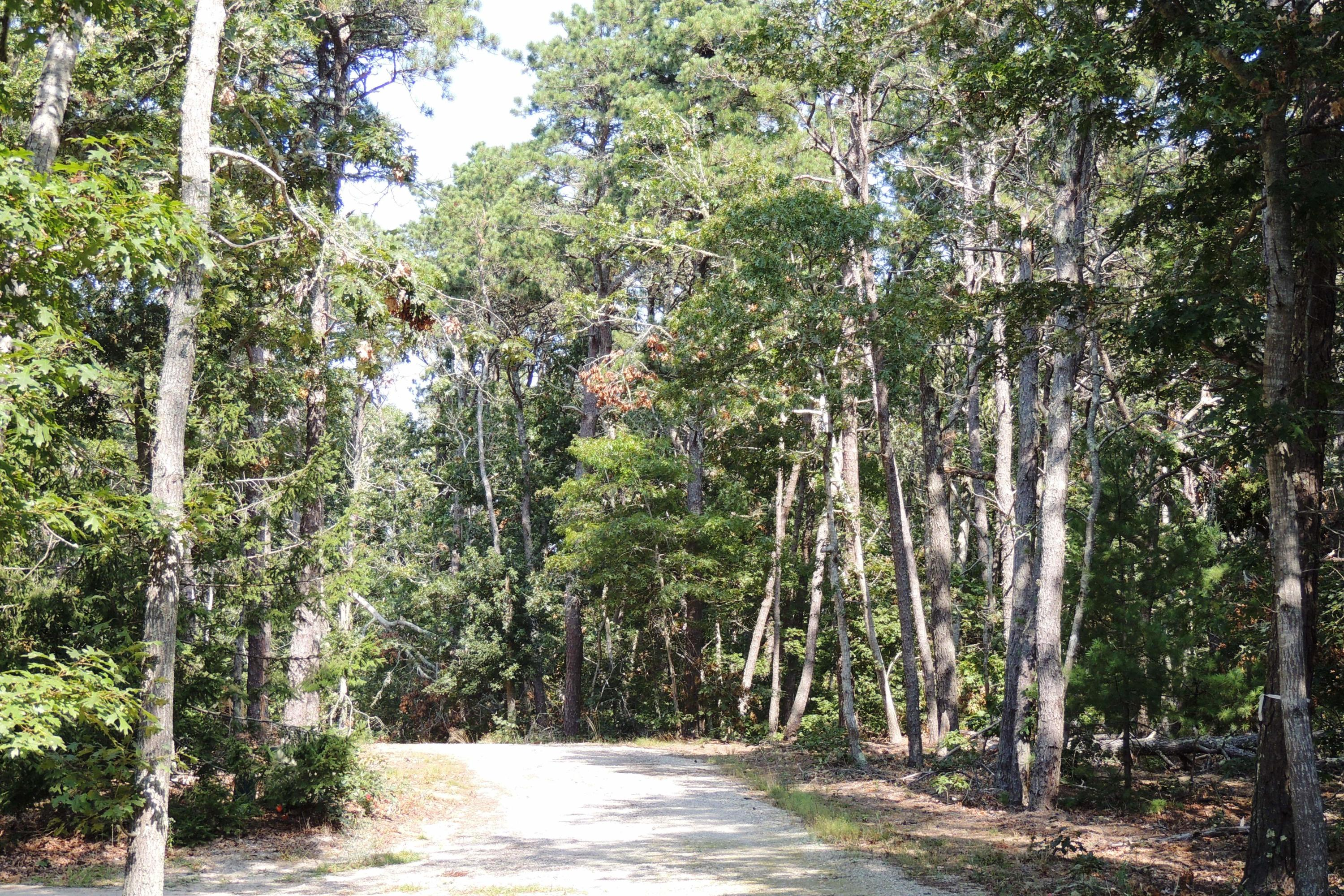 2 Old Campground Road, Harwich Port MA, 02646 details