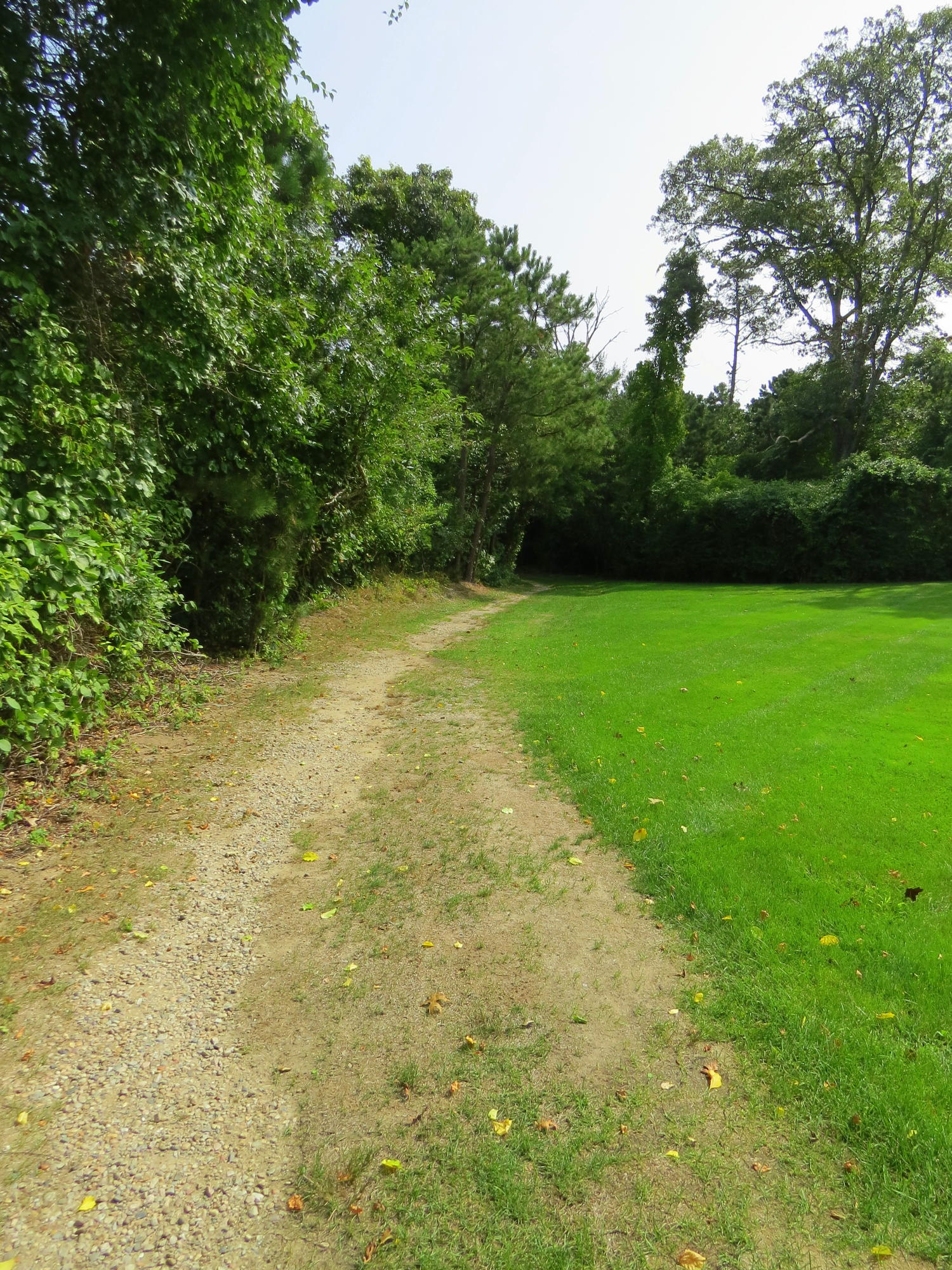 32 Toms Hollow Lane, Orleans, MA photo 34