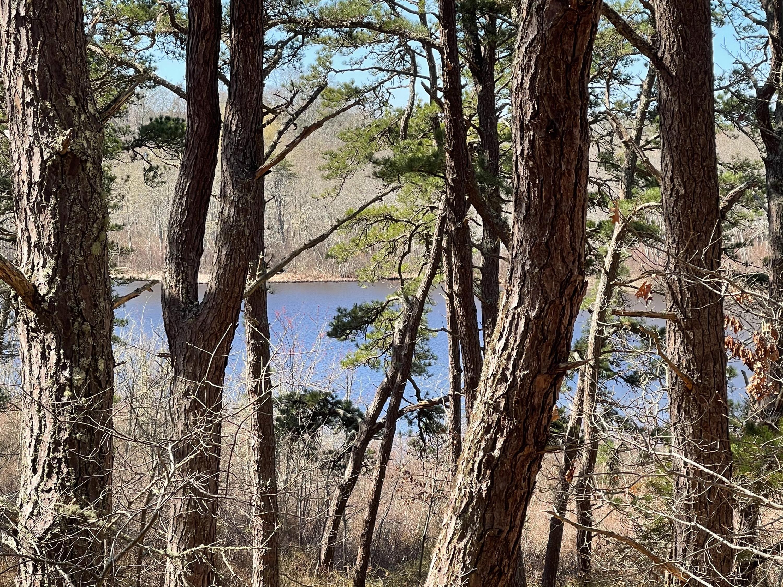 20 Perch Pond Way, Wellfleet MA, 02667 details
