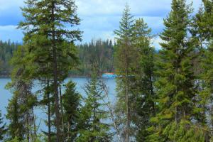 Cavanaugh Bay Views