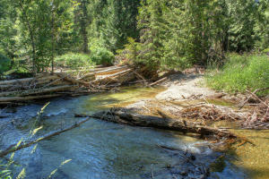 Another view of the Creek